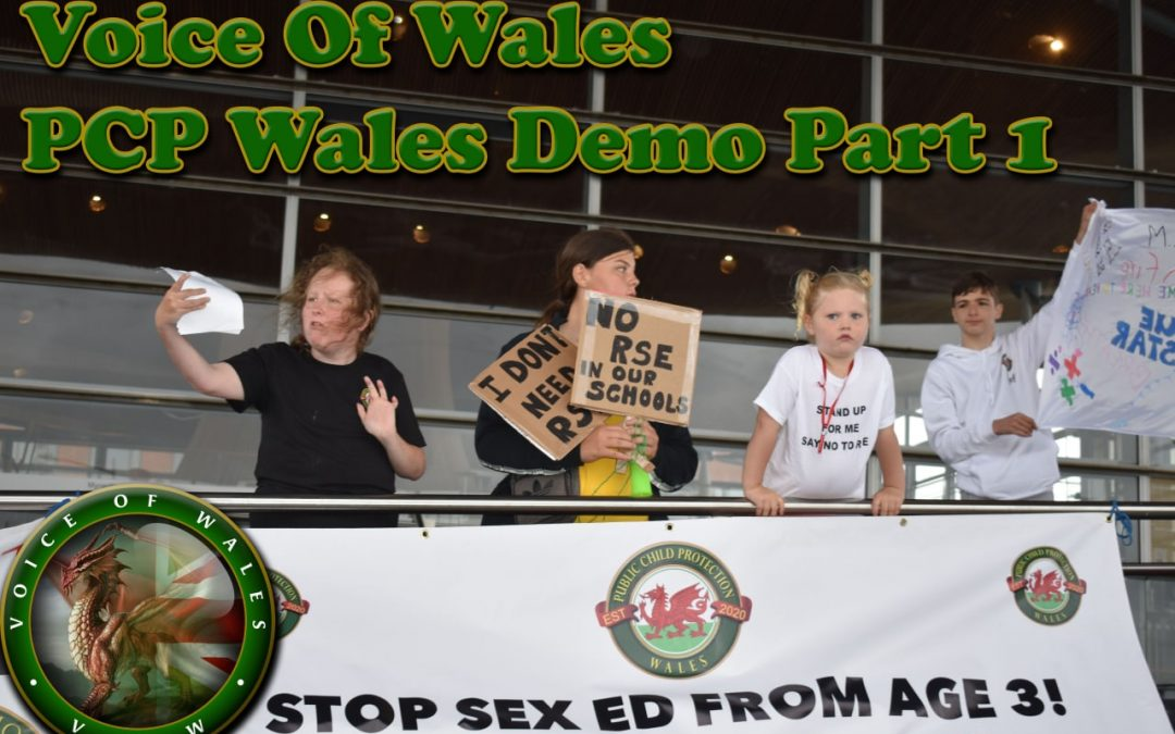 Voice Of Wales – PCP Wales Demo With David Kurten & Caroline Jones Part 1