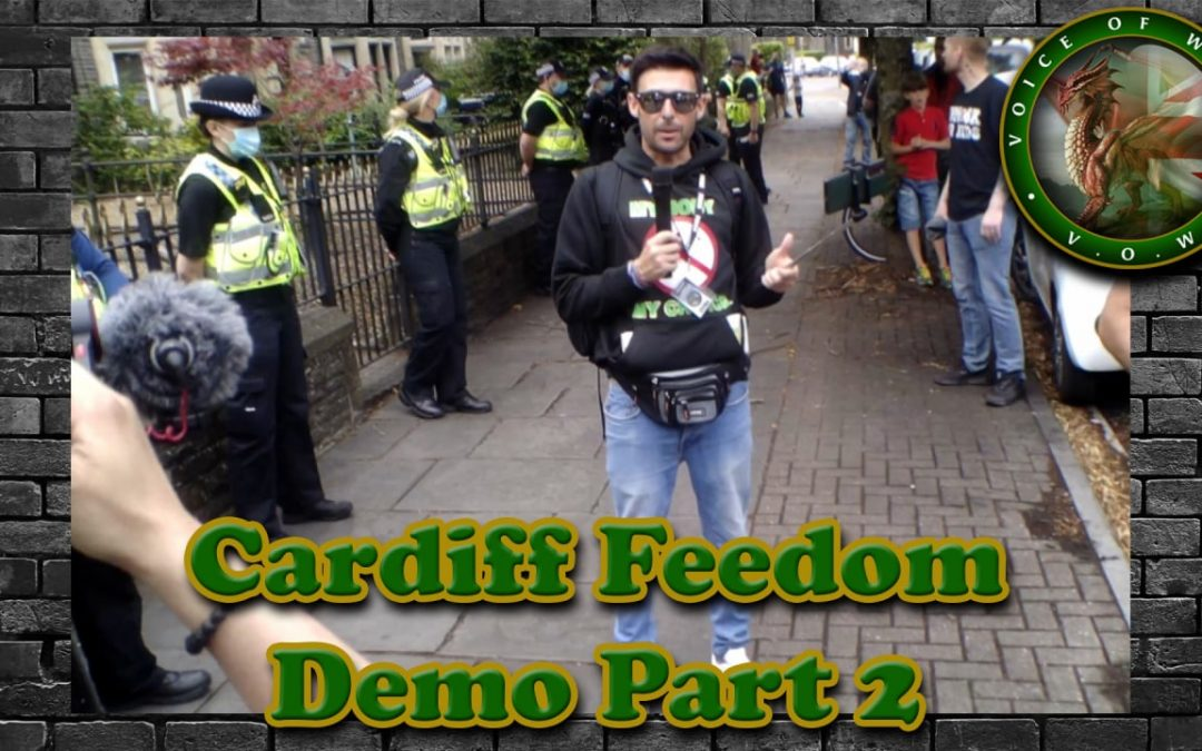 Voice Of Wales – World Freedom Rally Cardiff Part 2