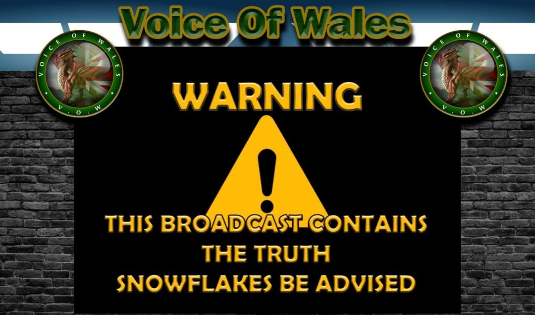Voice of Wales – Reply to BBC LIEve