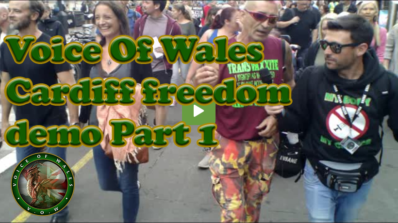 Voice Of Wales – Cardiff freedom demo Part 1